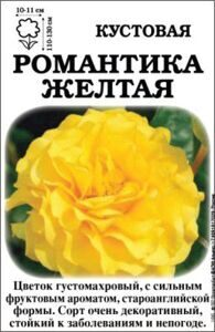 romantika_yellow_2015